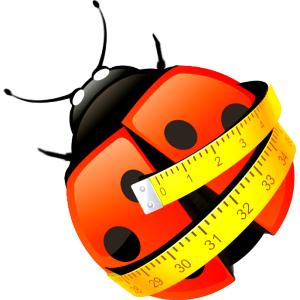 Приложение для подсчета калорий СИТ 30