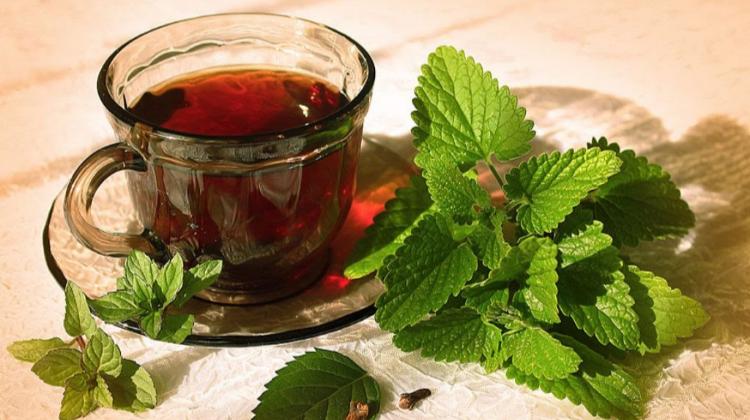 Какой чай можно пить летом