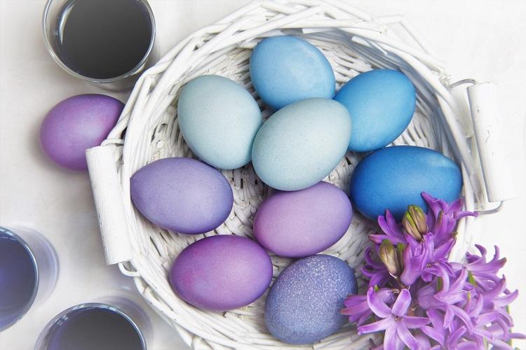 Синий цвет яиц – красная капуста